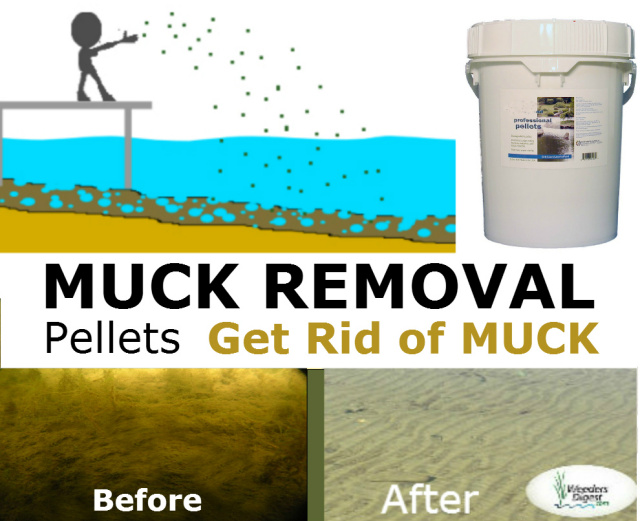 Lake Muck Removal Pellets All natural eco friendly